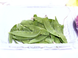 The first snow pea harvest!